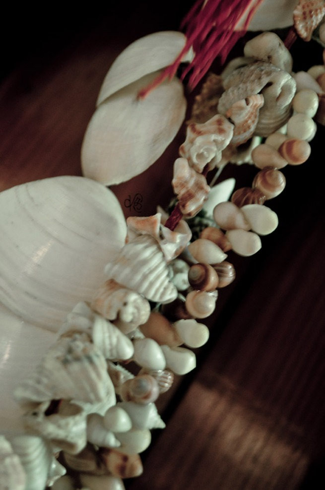 Seashells and strings