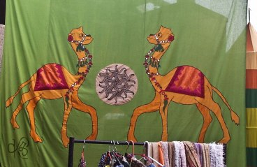 Cheeky camels