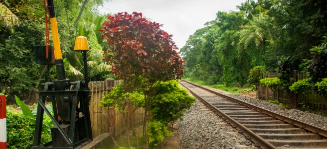 Train Tracks Towards Trichy